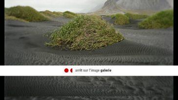 La galerie Arrêt sur l'image accueille une exposition de photos de Sabine Delcour