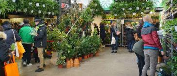 Le collectif Plantes pour tous de retour à Bordeaux