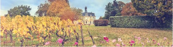 Les Bons Plans Bordeaux vous présentent les Portes Ouvertes des Châteaux en Médoc des 7 et 8 avril