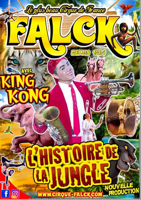 Les Bons Plans à Bordeaux vous offre vos entrées pour le Cirque Falck !