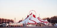 Les bons plans à Bordeaux présentent : le cirque Arlette Gruss fête ses 35 ans à Bordeaux, avec des représentations pendant les vacances de Noël !3